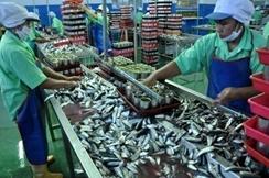 Proses Pengalengan Ikan